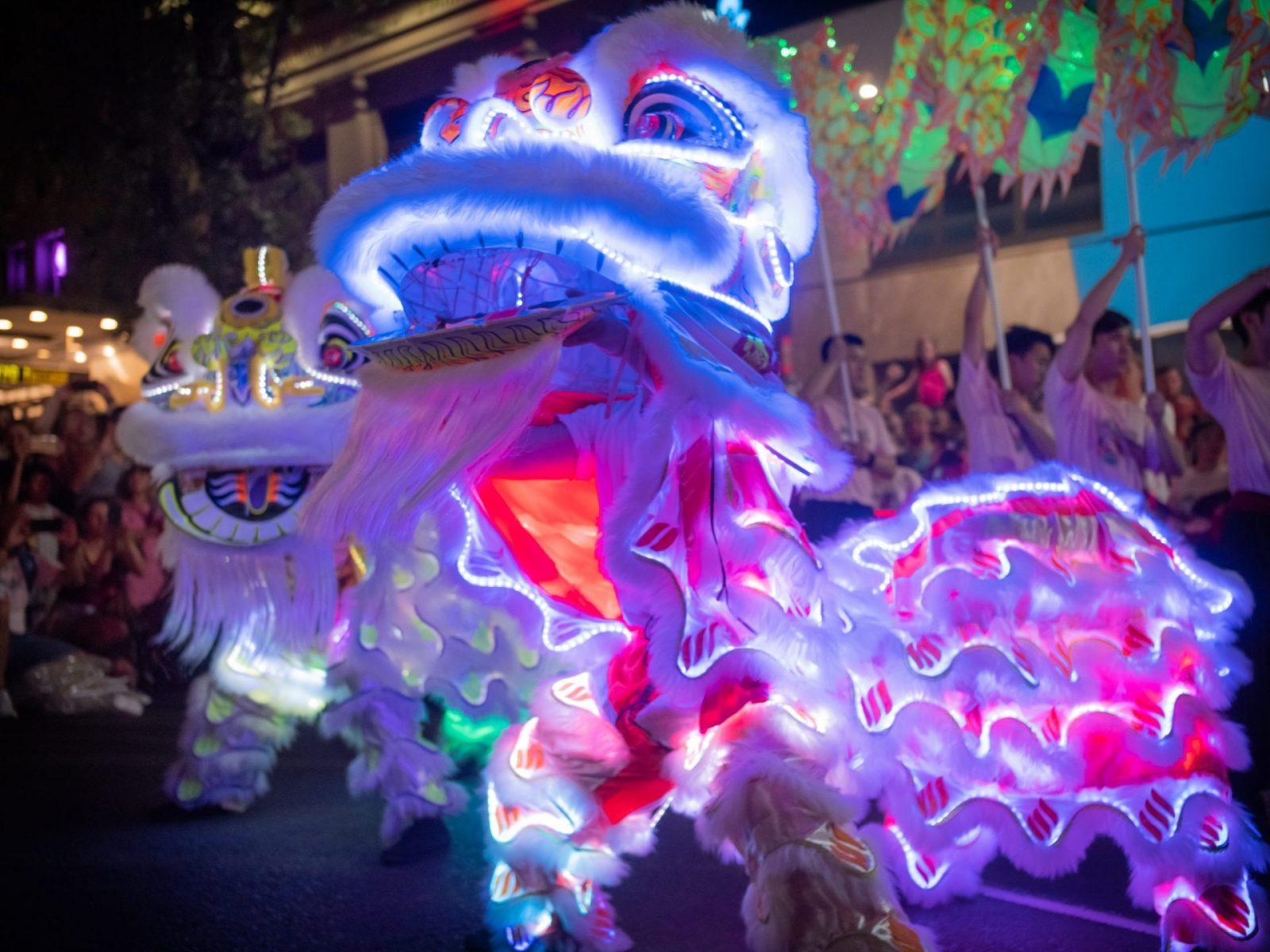 twin LED lion dance dragon dance